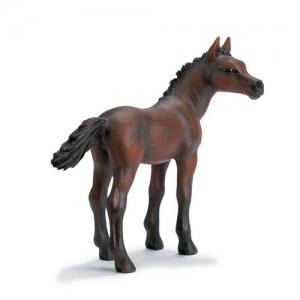 Домашние животные Арабский жеребёнок (Arab Foal) 13276