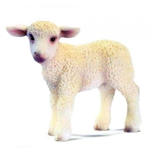 Домашние животные Овечка стоящая (Lamb standing) 13285