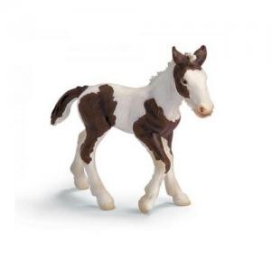Домашние животные жеребёнок (Tinker Foal) 13295