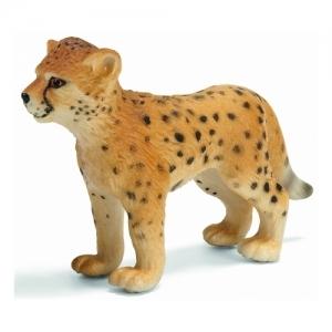 Дикие животные детёныш гепарда  (Cheetah cub) 14327