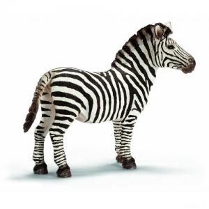 Дикие животные жеребец Зебры (Zebra stallion) 14391