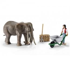 41409  Набор Уход за слоном