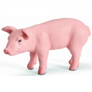 Домашние животные Поросёнок (Piglet standing) 13289