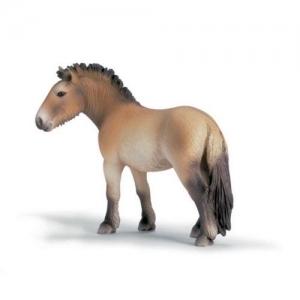 Домашние животные лошадь Пржевальского (Przewalskis Horse) 13620